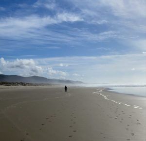 Walking the Beach in Nehalem Bay State Park – Adventures on The Oregon Coast