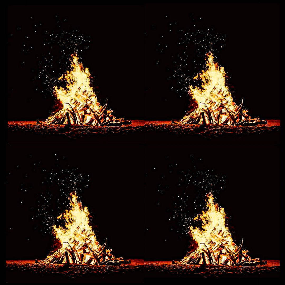 Stellar is 4 out of 4 Bonfires How Good Was It? Culinary Treasure Network Steven Shomler